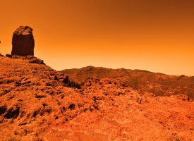 Så er beviset her endeligt: Der findes store sandorme på Mars